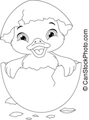 Duckling Coloring page - Duckling hatched from eggs