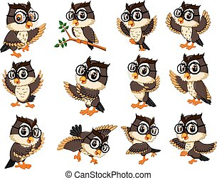 owl cartoon - illustration of owl character with different...