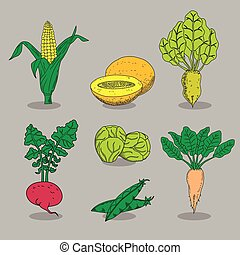 Hand-drawn collection of icons vegetables. Vegetarian food...