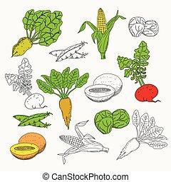 Vegetarian food set. Vegetarian menu set. Vegetables and...