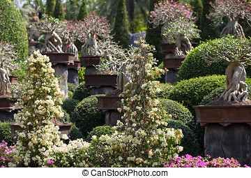 Examples of landscape design, Thailand, South East Asia