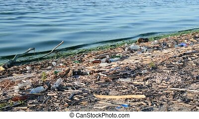 Polluted water and trash on a beach - Water pollution with...