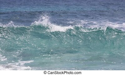 beach waves Makapu'u - waves in Makapu'u Beach located...