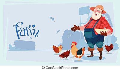 Farmer Feed Chicken Breeding Hen For Food Farm Flat Vector...