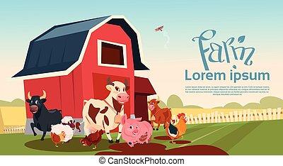 Farm Breeding Animals Farmland Background Flat Vector...