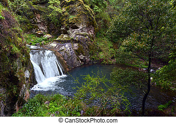 Waterfall in the Blue Lake at the Blue Mountains in New...