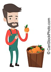 Farmer collecting oranges vector illustration. - Happy...