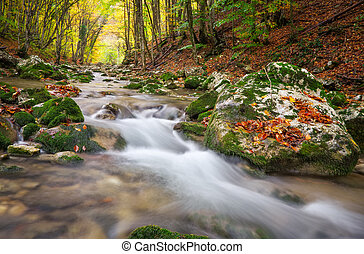 Beautiful autumn landscape with mountain river and colorful trees. Mountain forest in Crimea.