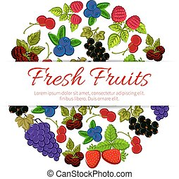 Fresh fruits and berries. Vector fruit banner