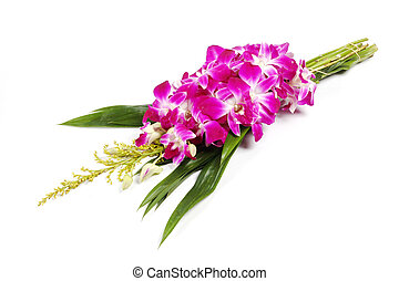 Violet orchid with pandan for Buddhist begging isolated on white background..