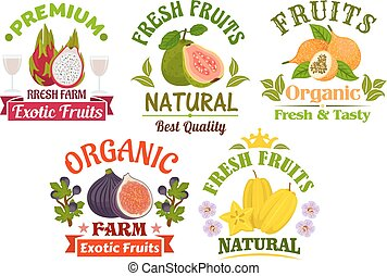 Fresh juicy natural organic fruits icons set
