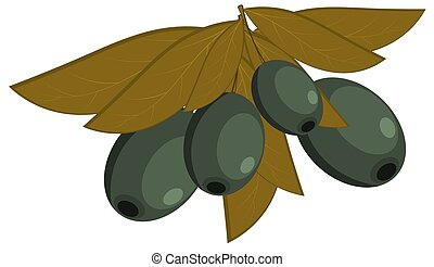 Vector illustration of black olives with leaves on a white background. Dietary food. Cartoon