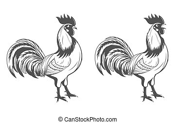 Vector roosters set, symbol of 2017.
