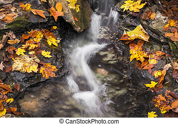 Fall Splash - A babbling brook flows over a rocky stream bed...