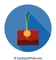 Onion icon in flat style isolated on white background. Plant symbol stock vector illustration.