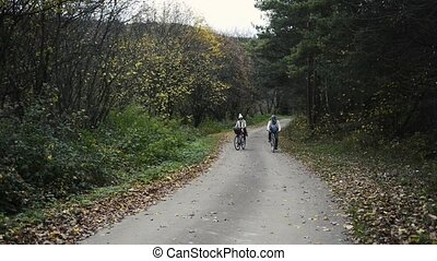 Senior couple riding bicycles in colorful autumn nature -...