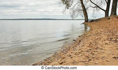 shore of a large lake and slowly rolling wave on the sand...