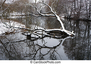Winter landscape. Snow, river, tree and its reflection in...