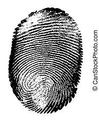 Fingerprint - Printout of human fingerprint with unique...
