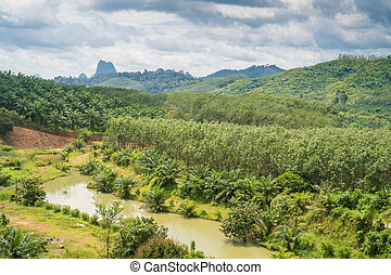 Viewpoint in Phang Nga province,Thailand
