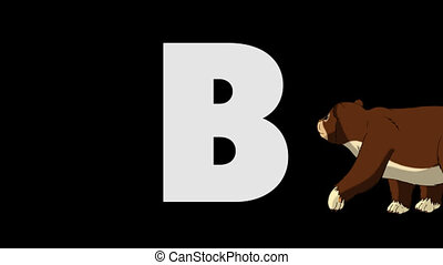 Letter B and Bear (background) - Animated animal alphabet....
