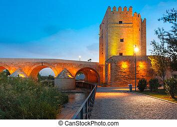 Mezquita and Roman bridge in Cordoba, Spain - Illuminated...