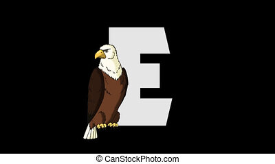 Letter E and Eagle (foreground) - Animated animal alphabet....