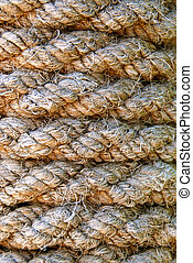 Old rope texture - Background or texture of old rope