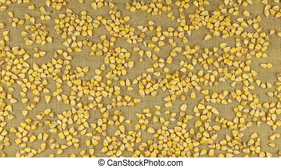 Approximation of corn grains scattered on burlap, top view