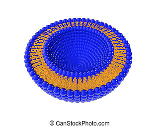 Liposome Bi-layer Structure 3D Illustration - Medical 3D...