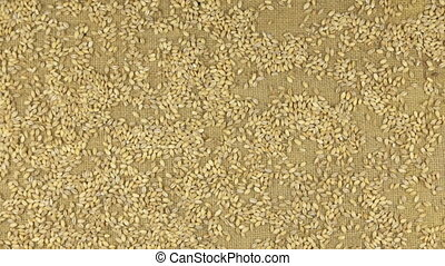 Approximation of pearl barley grains scattered on burlap,...