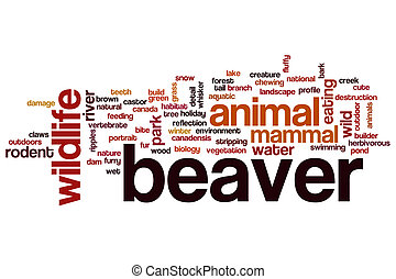 Beaver word cloud concept