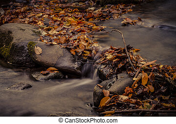 Fall in Great Smoky Mountains National Park - Cascasding...