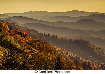 Fall in Great Smoky Mountains National Park - Colorful fall...