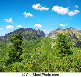 Mengusovska Valley in Vysoke Tatry (High Tatras), Slovakia -...