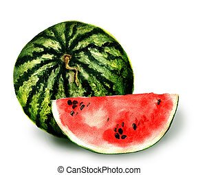 Watermelon - Watercolor image of whole watermelon and slice...