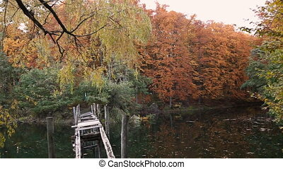 Lake in autumn forest