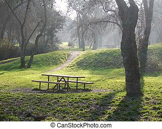 """Casa de Campo - Misty day in old park """"Casa de Campo"""" in..."""
