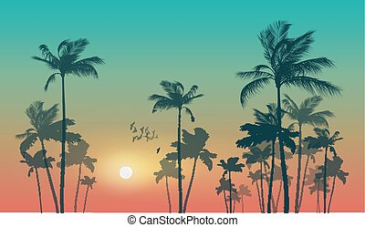 Exotic tropical palm trees at sunset or sunrise. Highly...