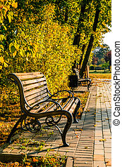 Bench in autumn park, beautiful fall landscape
