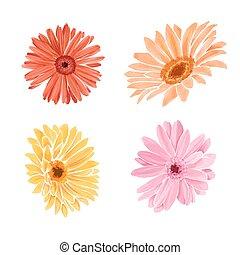 Watercolor flowers. Floral design elements. - Set...