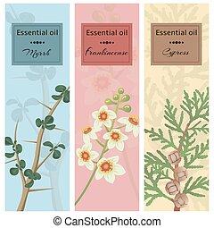 Essential oil set collection. Myrrh, frankincense, cypress...