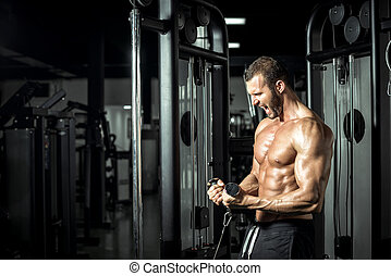 Biceps cable curls in gym - Young attractive muscular...