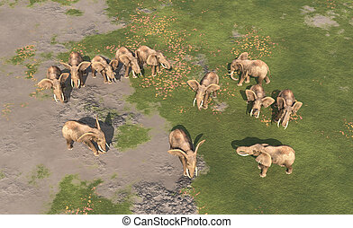 Aerial view of an elephant herd - Computer generated 3D...
