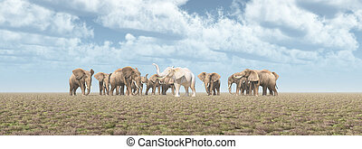 White elephant in an elephant herd - Computer generated 3D...
