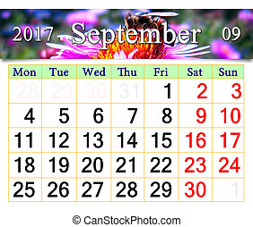 calendar for September 2017 with bee on the pink aster -...
