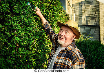 elderly farmer - Senior man trimming garden plants....