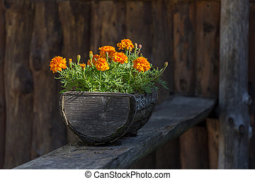 Flowers in the wooden pot - Flowers in the old wooden flower...