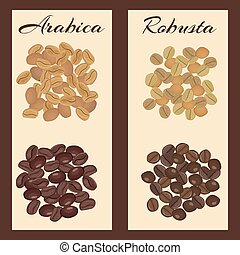 Types of coffee beans. - Arabica and robusta coffee beans....