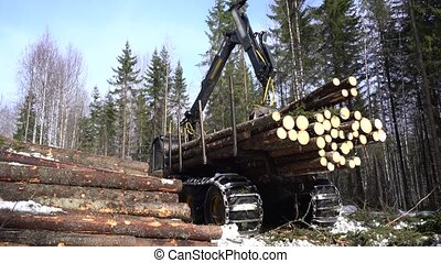 View of machine with robotic arm lifts logs in forest